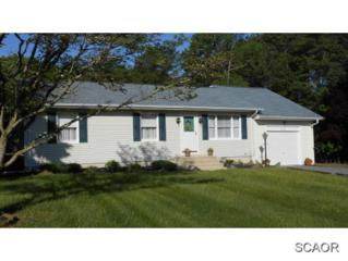 20832  Pickwicke Road  0, Lewes, DE 19958 (MLS #623214) :: The Don Williams Real Estate Experts