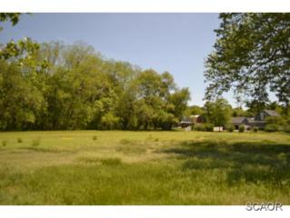 6045 S Rehoboth Blvd  , Milford, DE 19963 (MLS #623243) :: The Don Williams Real Estate Experts