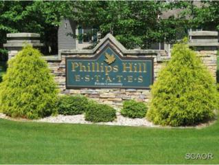 Millsboro, DE 19966 :: The Don Williams Real Estate Experts