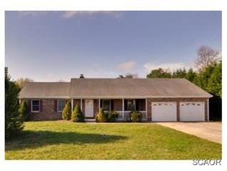 23730  Dolphin Dr  0, Millsboro, DE 19966 (MLS #611087) :: The Don Williams Real Estate Experts