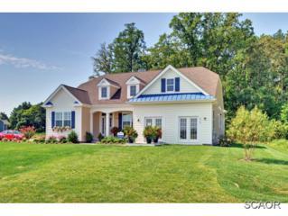 29680  Riverstone Drive  0, Milton, DE 19968 (MLS #614497) :: The Don Williams Real Estate Experts