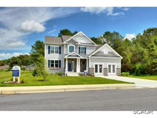 29672  Riverstone Drive  0, Milton, DE 19968 (MLS #614507) :: The Don Williams Real Estate Experts