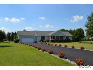 6470  Bucks Rd  0, Milford, DE 19963 (MLS #616901) :: The Don Williams Real Estate Experts