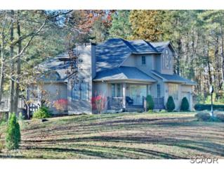 7880  Sugar Maple Dr  0, Milford, DE 19963 (MLS #618511) :: The Don Williams Real Estate Experts