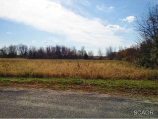 Crooked Road  , Lincoln, DE 19960 (MLS #618856) :: The Don Williams Real Estate Experts