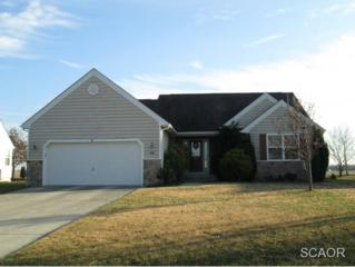 246 S Landing Drive  0, Milford, DE 19963 (MLS #619023) :: The Don Williams Real Estate Experts