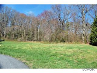 14  Tanglewood Ct  , Lewes, DE 19958 (MLS #621967) :: The Don Williams Real Estate Experts
