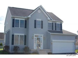 104  Marlin Court  0, Milford, DE 19963 (MLS #622189) :: The Don Williams Real Estate Experts