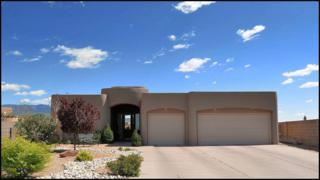 8830  Black Oak Court NE , Albuquerque, NM 87122 (MLS #820423) :: Campbell & Campbell Real Estate Services