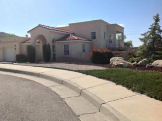 12600  Nuez Court NE , Albuquerque, NM 87111 (MLS #827673) :: Campbell & Campbell Real Estate Services
