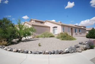 7211  Jalisco Road NW , Albuquerque, NM 87114 (MLS #829186) :: Campbell & Campbell Real Estate Services
