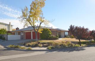 13308  Desert Flower Place NE , Albuquerque, NM 87111 (MLS #829449) :: Campbell & Campbell Real Estate Services