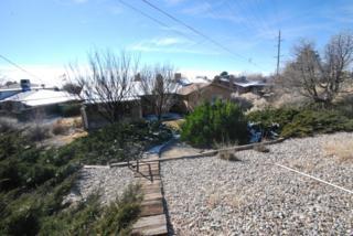 3832  Shenandoah Place NE , Albuquerque, NM 87111 (MLS #830016) :: Campbell & Campbell Real Estate Services