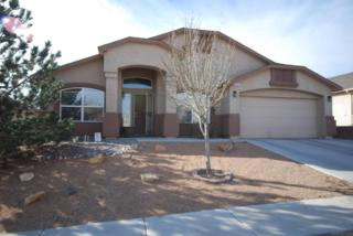 9028  Hidden Spring Avenue  , Albuquerque, NM 87121 (MLS #834334) :: Campbell & Campbell Real Estate Services
