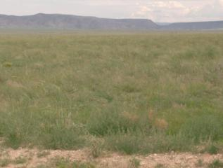 Military Highway  , Veguita, NM 87062 (MLS #834443) :: Campbell & Campbell Real Estate Services