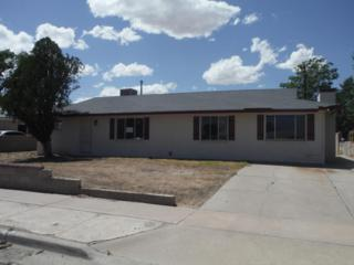 1213  Mariano Trail SW , Albuquerque, NM 87121 (MLS #841020) :: Campbell & Campbell Real Estate Services