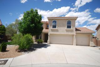 6027  Stoney Bluff Court  , Albuquerque, NM 87120 (MLS #841194) :: Campbell & Campbell Real Estate Services