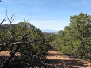 1-0  Ponderosa  , Santa Fe, NM 87505 (MLS #841309) :: Campbell & Campbell Real Estate Services