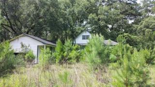 481  Old Dirt Rd  , Tallahassee, FL 32317 (MLS #250492) :: The Rivers Team