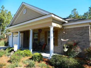 31  Chestnut Lane  , Crawfordville, FL 32327 (MLS #251716) :: The Rivers Team