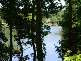 8V  Preservation  , Tallahassee, FL 32312 (MLS #256534) :: The Rivers Team
