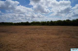 0000  Blue Meadow Blvd  , Salado, TX 76571 (MLS #106595) :: JD Walters Real Estate