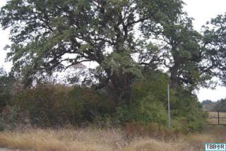 0000  Cart Rd  , Temple, TX 76502 (MLS #107516) :: JD Walters Real Estate