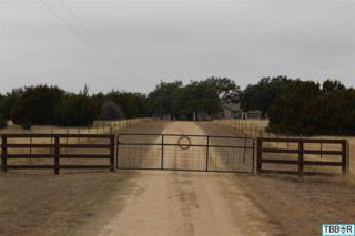 1600  George Wilson Rd  , Belton, TX 76513 (MLS #107891) :: JD Walters Real Estate