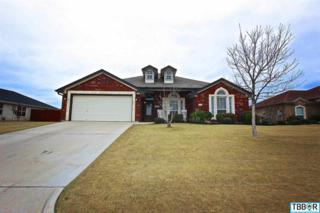 1402  Loving Trl  , Belton, TX 76513 (MLS #108775) :: JD Walters Real Estate