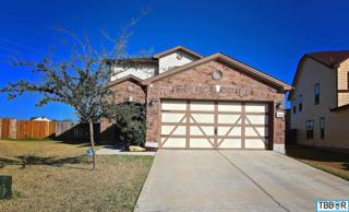 9114  Sage Loop Ct  , Temple, TX 76502 (MLS #108864) :: JD Walters Real Estate