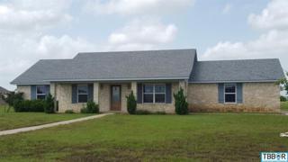 107  Hatter Dr  , Moody, TX 76557 (MLS #109587) :: JD Walters Real Estate