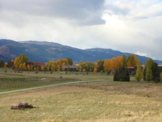 LOT 121  Alpine Village Loop  , Alpine, WY 83128 (MLS #14-2691) :: West Group Real Estate
