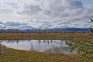 265 W 3000  , Driggs, ID 83422 (MLS #14-2787) :: West Group Real Estate