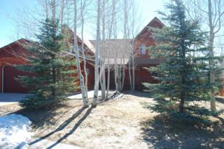 640  Appaloosa Trl  , Driggs, ID 83422 (MLS #15-714) :: West Group Real Estate