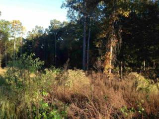 324  Annandale Drive  , Clayton, NC 27520 (#1976985) :: Marti Hampton Team - Re/Max One Realty