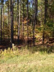 Lot 1  Truth Road  , New Hill, NC 27562 (#1976990) :: Marti Hampton Team - Re/Max One Realty