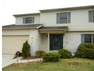 7805  Haralson Court  , Holland, OH 43528 (MLS #5081805) :: RE/MAX Masters