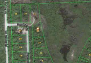 27  Sugarbush Rd  , South Bruce Peninsula, ON N0H 2G0 (#X3180914) :: Mike Clarke Team