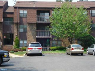 2131  Old Stone Mill Drive  , East Windsor, NJ 08512 (#6183516) :: Keller Williams Real Estate