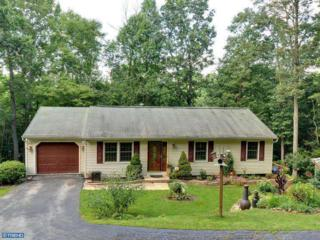 135  Nevins Way  , Coatesville, PA 19320 (#6442603) :: Keller Williams Real Estate