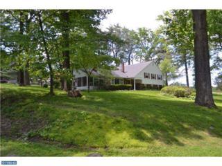 20  Pine Drive  , Chester Springs, PA 19425 (#6458171) :: Keller Williams Realty - Matt Fetick Real Estate Team