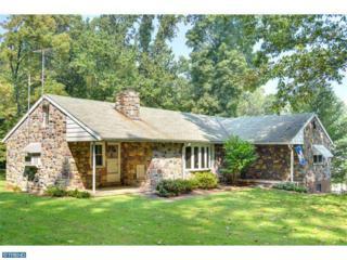 1401  Elbow Lane  , Chester Springs, PA 19425 (#6474703) :: Keller Williams Realty - Matt Fetick Real Estate Team
