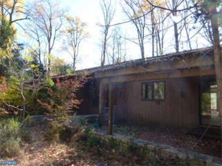 2452  Horseshoe Trail  , Chester Springs, PA 19425 (#6480118) :: Keller Williams Realty - Matt Fetick Real Estate Team