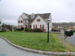 829  Shadebrush Ridge  , West Chester, PA 19382 (#6486764) :: Keller Williams Realty - Matt Fetick Real Estate Team