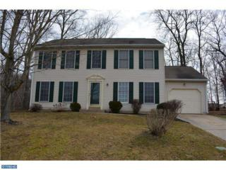 19  Kings Bridge Court  , Newark, DE 19702 (#6537547) :: Team Webster