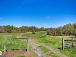 1357  Sheep Hill Road  , Pottstown, PA 19465 (#6542033) :: Keller Williams Real Estate