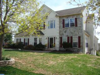111  Percheron Drive  , Spring City, PA 19475 (#6561664) :: Simmon Property Group