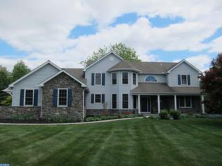 123 N Iroquois Lane  , Chester Springs, PA 19425 (#6575654) :: Keller Williams Realty - Matt Fetick Real Estate Team
