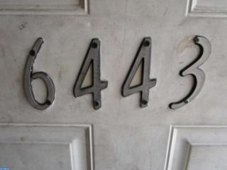 6443  Grays Avenue  , Philadelphia, PA 19142 (#6576662) :: Keller Williams Realty - Matt Fetick Real Estate Team