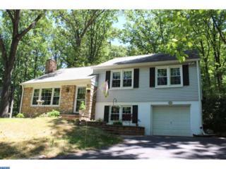749  Old Eagle School Road  , Wayne, PA 19087 (#6580891) :: Benjamin Hardy Real Estate Group